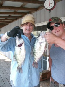 Crappie 1.5 lb and 1.75 lb.